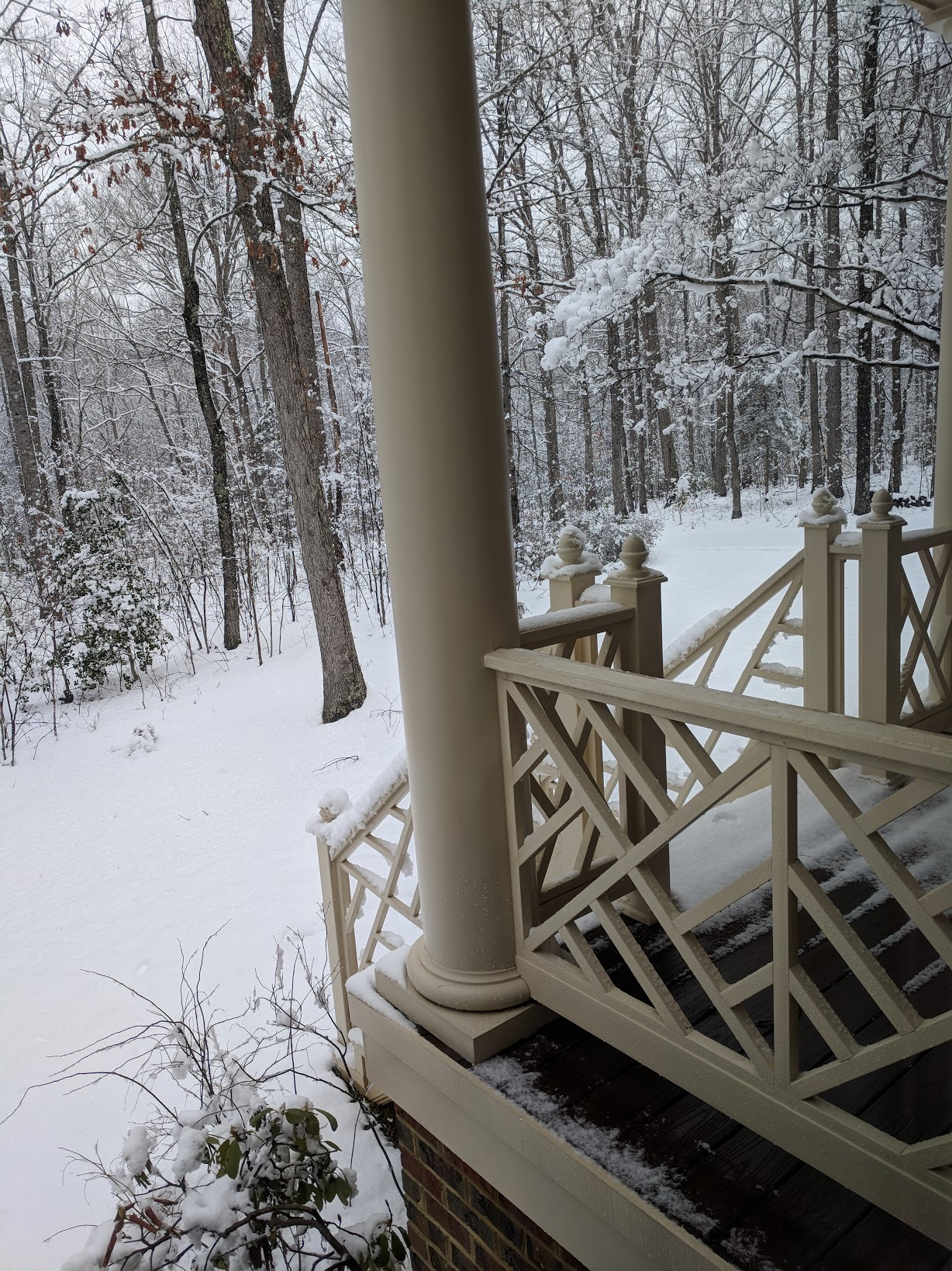 forest view from a snow-covered porch